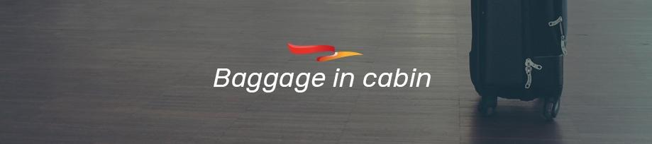 plus-ultra-equipaje-en-cabina-en