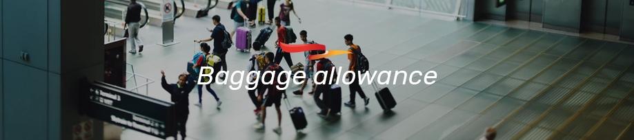 plus-ultra-franquicia-de-equipaje-en